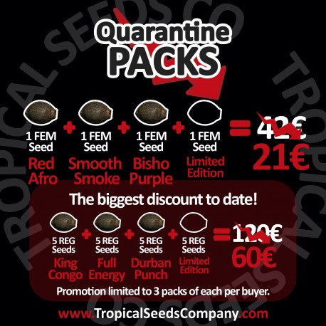 QUARANTINE PACK FEMINIZED SEEDS