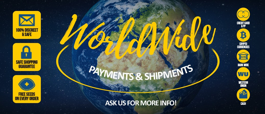 Payments & Shipments