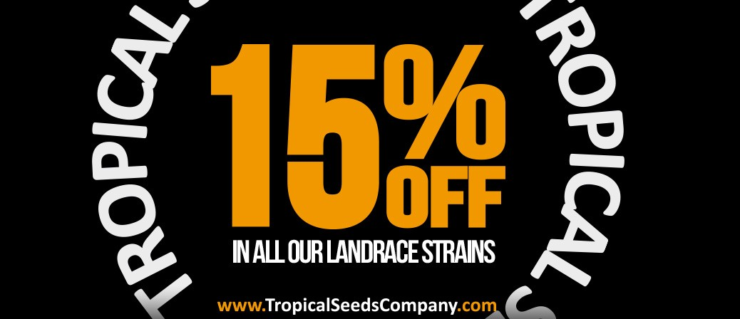 15%OFF IN ALL OUR LANDRACE SEEDS