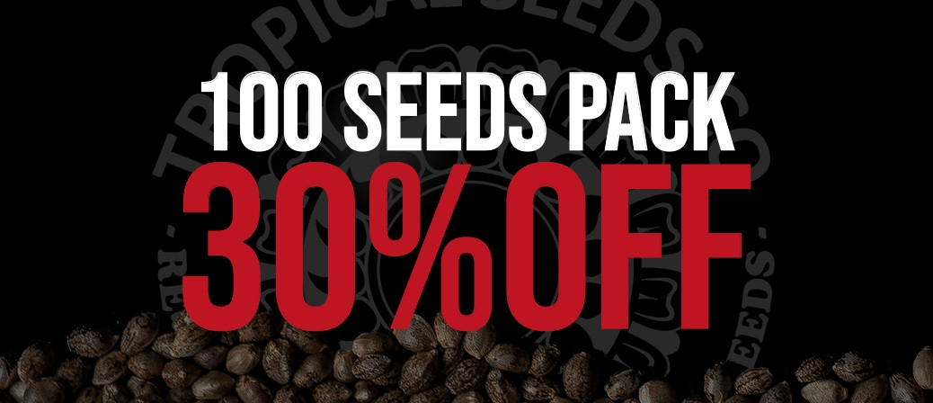 100 SEEDS PACK